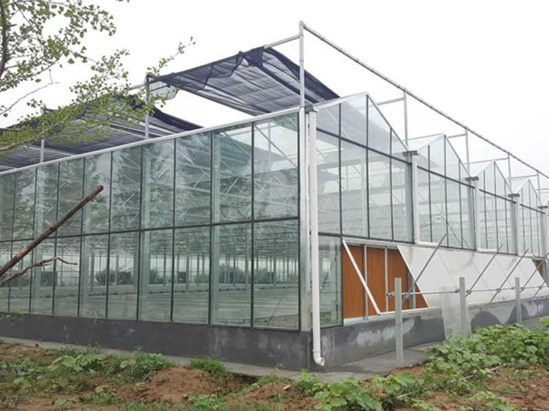 玻璃温室建设.jpg