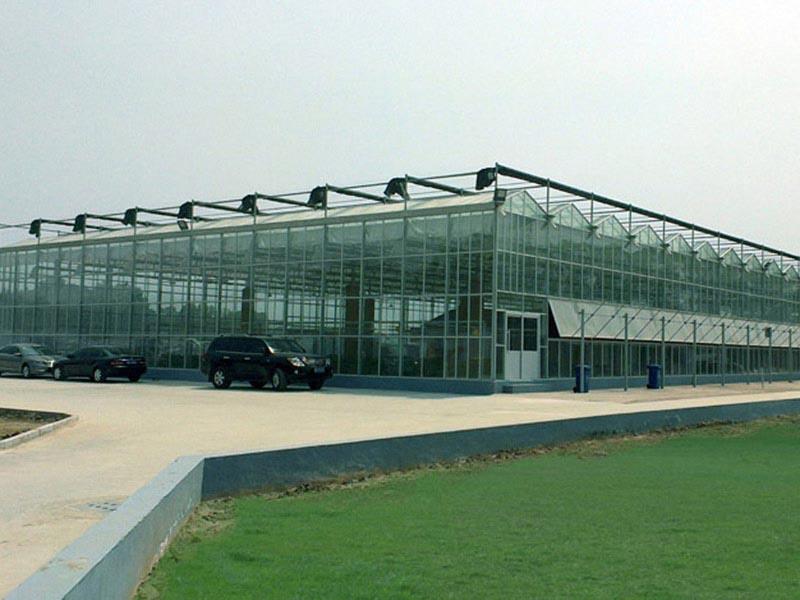 玻璃温室2.jpg